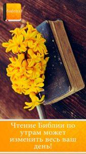 bibliya-sinodalyniy-perevod 8